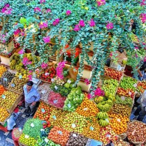 Toutes sortes de fruits sur le marché