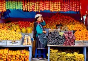 plein de fruits